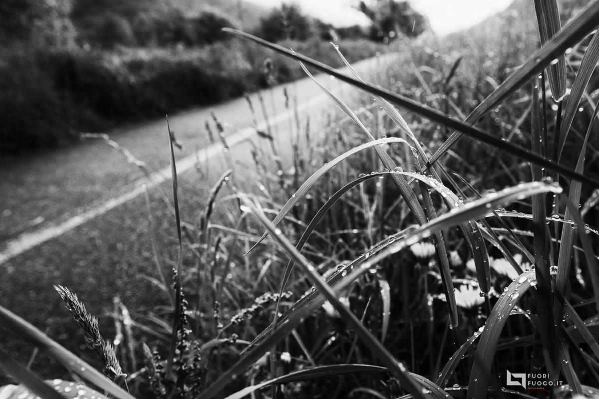 La strada della vita-5