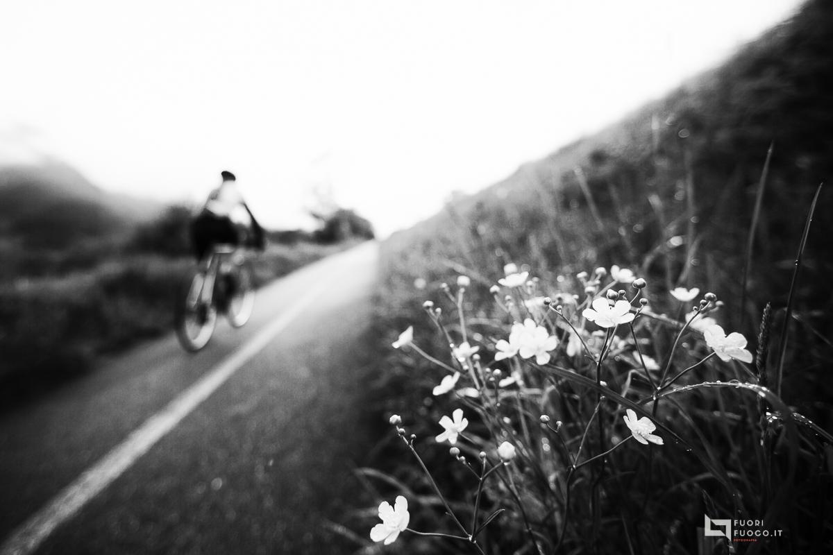 La strada della vita-6